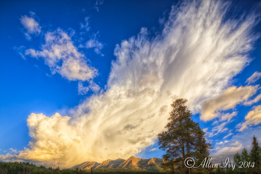 IVY_20140825_4480_PM_PS-6